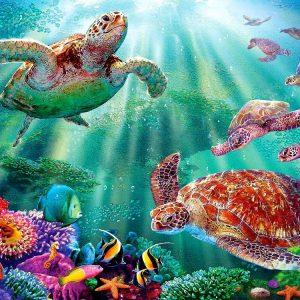 Turtle Voyage 500+pc Lge.Pc Jigsaw Puzzle