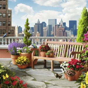 Rooftop Garden 500pc LGE Format Ravensburger Jigsaw Puzzle