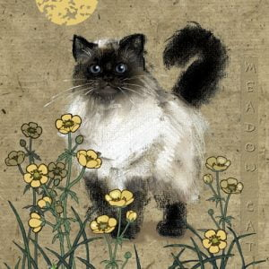 Meadow Cat 1000 PC Jigsaw Puzzle