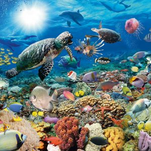 Beneath the Sea 2000 PC Jigsaw Puzzle