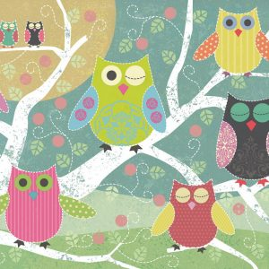 Colourful Night Owl 500 PC Jigsaw Puzzle