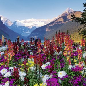 Mountains of Flowers 3000 PC Jigsaw Puzzle