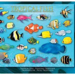 Tropical Fish 1000 PC Jigsaw Puzzle