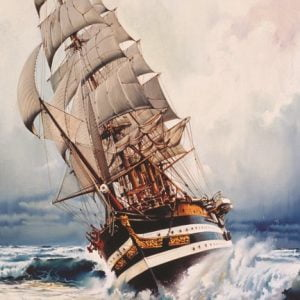 Black Pearl 1000 PC Jigsaw Puzzle