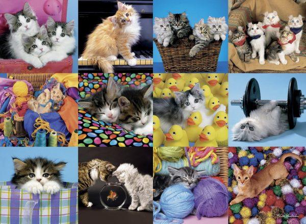 Kitten Collage 300 XXL Jigsaw Puzzle