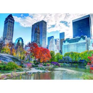 New York Central Park 1000 PC Jigsaw Puzzle