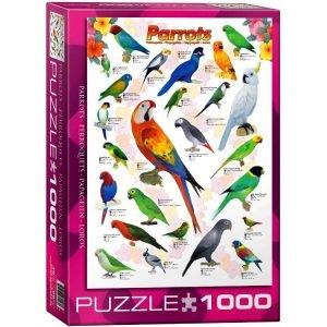 Parrots 1000 PC Jigsaw Puzzle