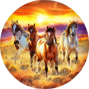 Running in the Sun 500 PC Jigsaw Puzzle