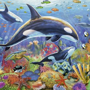 Underwater World 2 x 24 PC Jigsaw Puzzle