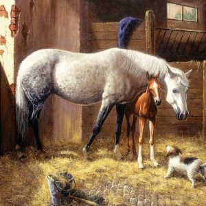 We have Company 1000 PC Jigsaw Puzzle