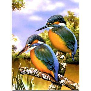 Kingfisher Birds 300 PC Jigsaw Puzzle