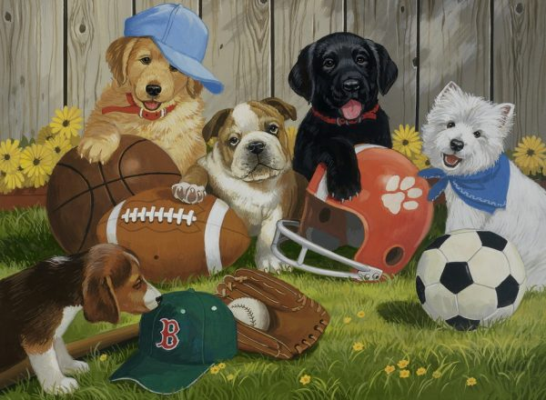 Lets Play Ball 200 XXL PC Jigsaw Puzzle