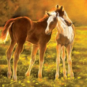 Backlit Foals 550 PC Jigsaw Puzzle