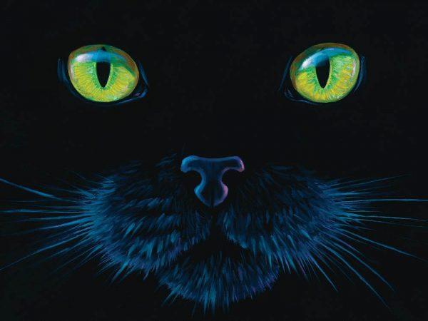 Black Cat 1000 PC Jigsaw Puzzle