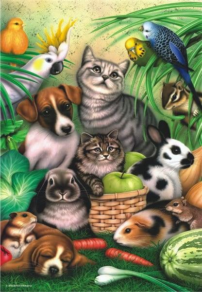 Magic Pets 260 PC Jigsaw Puzzle