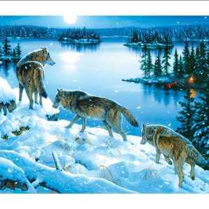 Moon Shadow 1000 PC Jigsaw Puzzle