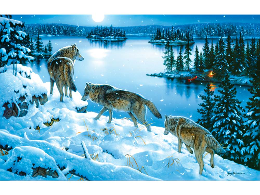 Cars For Sale In Colorado >> Sunsout Jigsaw Puzzle - Moon Shadow 1000 Piece