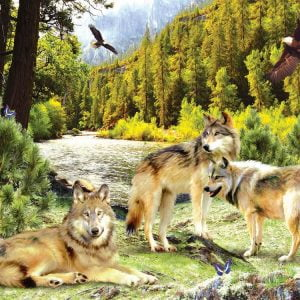 Wolf Creek 1000 PC Jigsaw Puzzle