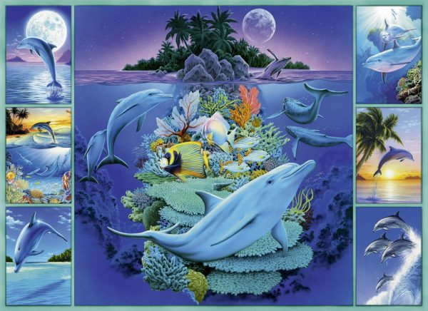 dolphin-collage-300-pc-jigsaw-puzzle