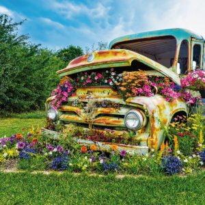 flower-truck-500-pc-lge-format-jigsaw-puzzle