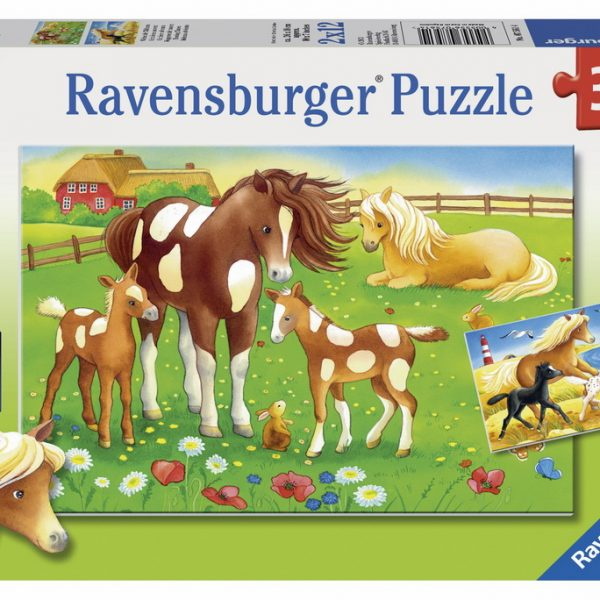 flowing-manes-2-x-12-pc-jigsaw-puzzle