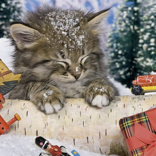 cats-in-the-snow-80-pc-ravensburger -jigsaw-puzzle-
