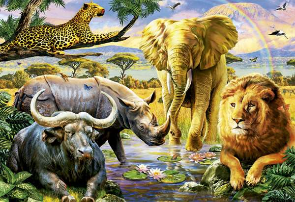 The Big Five Piece Educa Puzzle on 3d Card For Pc