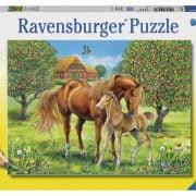 horses-in-the-field-100-pc-jigsaw-puzzle