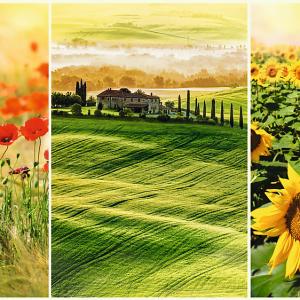 romantic-puzzle-sunny-tuscany-1000-pc-jigsaw-puzzle