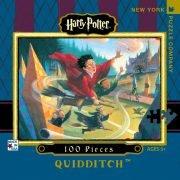 Harry Potter Quidditch 100 PC Mini Jigsaw Puzzle