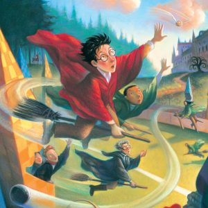 Harry Potter - Quidditch 100 Piece Mini Puzzle
