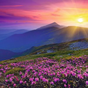 Mountains at Dawn 1000 PC Jigsaw Puzzle
