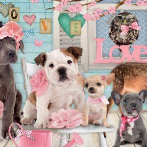 Studio Pets True Love 1000 Piece Jigsaw Puzzle
