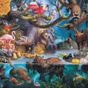 Water World 1000 PC Jigsaw Puzzle