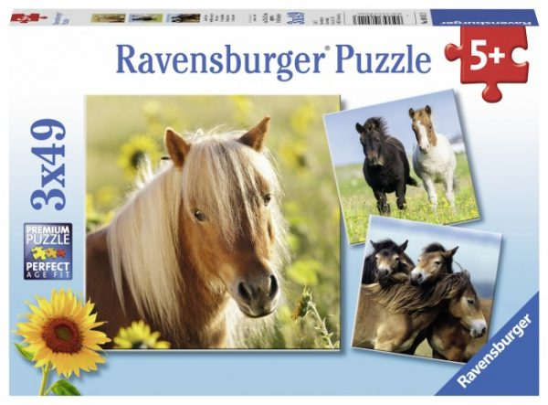 Loving Horses 3 x 49 PC Jigsaw Puzzle