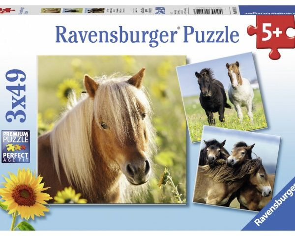 Loving Horses 3 x 49 PC Jigsaw Puzzle