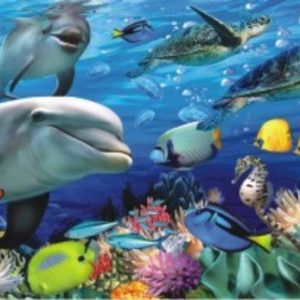 Panoramic Undersea 1000 PC Jigsaw Puzzle