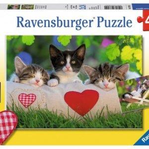Sleepy Kittens 2 x 24 PC Jigsaw Puzzle