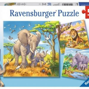 Wild Animals 3 x 49 PC Jigsaw Puzzle