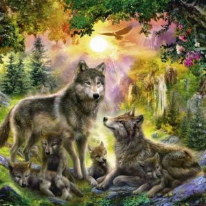 Wolf Family in the Sunshine 500 PC Jigsaw Puzzle