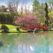 Colourful Garden 1000 Piece Panoramic Jigsaw Puzzle