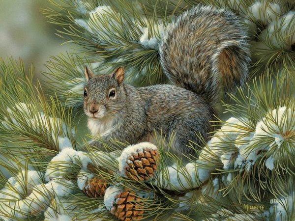 Gray Squirrel 275 Large Piece Puzzle