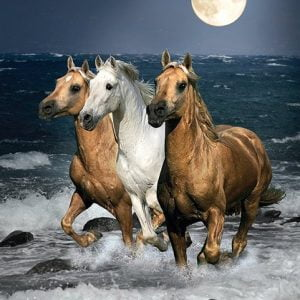 Running Horses 1500 Piece Clementoni Jigsaw Puzzle