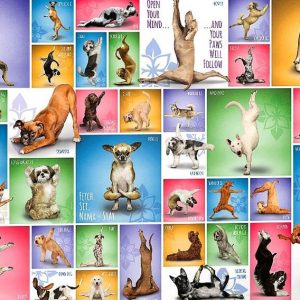 Yoga Dogs 1000 Piece Eurographics Jigsaw Puzzle