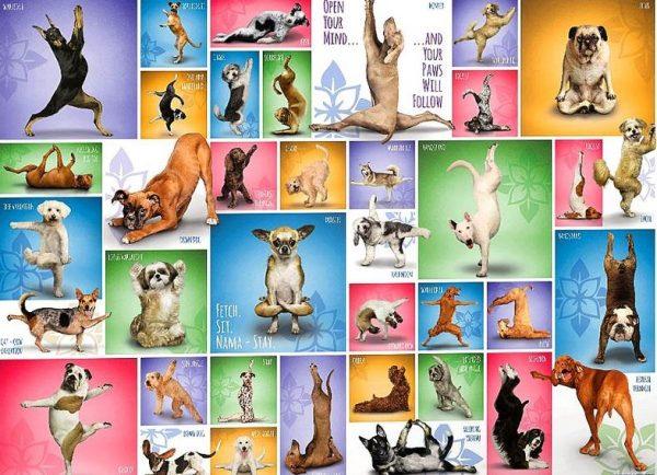 Yoga Dogs 1000 Piece Eurographics Jigsaw Puzzle