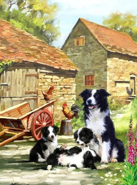 Country Life – Farmhouse Collies 1000 Piece Holdson Puzzle