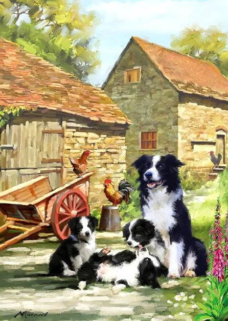 Country Life - Farmhouse Collies 1000 Piece Holdson Puzzle