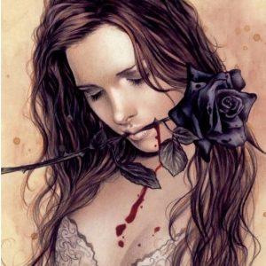 Victoria Frances - Favole - Dark Rose 1000 Piece Puzzle