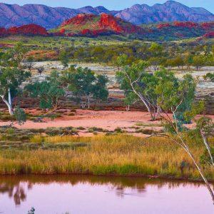 Ken Duncan - Outback Splendour, Finke River, NT 2000 Piece Puzzle