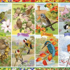 Seasonal Garden Birds 1000 Piece Jigsaw Puzzle